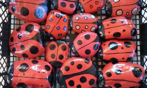 ladybirds-box-garden-stones